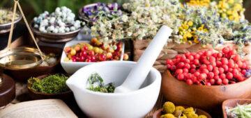 Assurance santé : tous les bienfaits de la phytothérapie